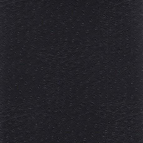 Autruche noir