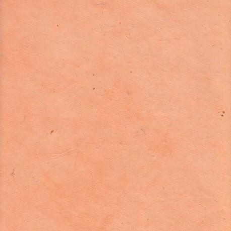 Papier népalais fin saumon clair